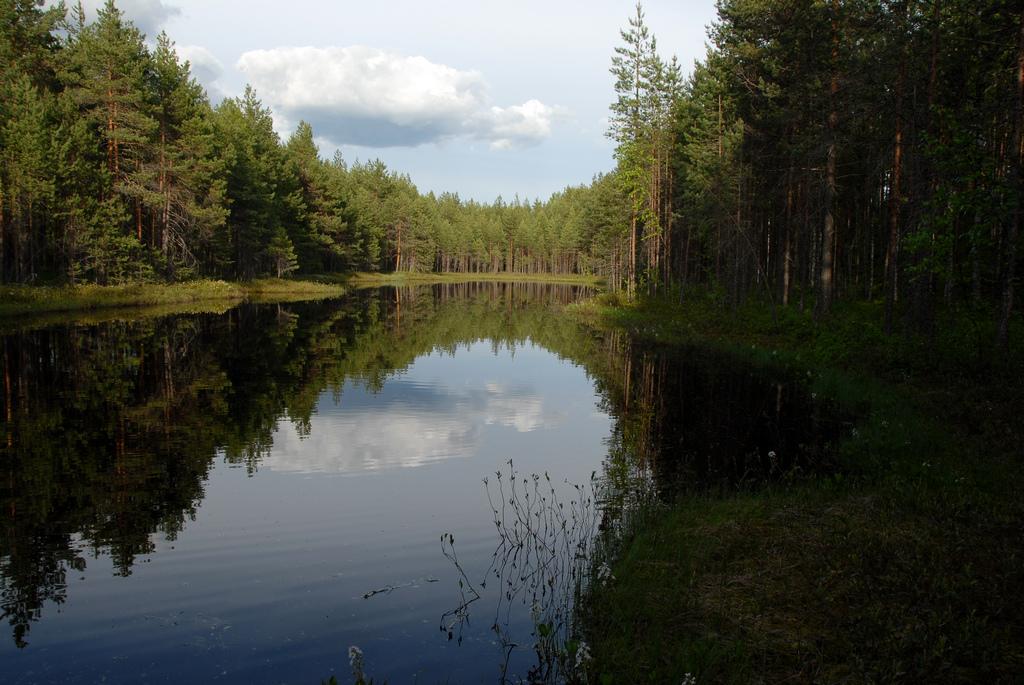 wpoma_harjuretki_07
