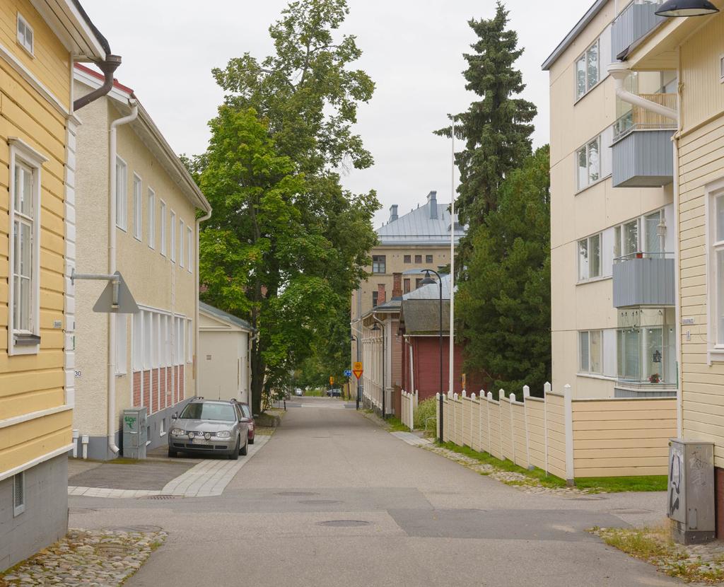 Kuopio 28.8.2017 -21_barsoprojekti_vari