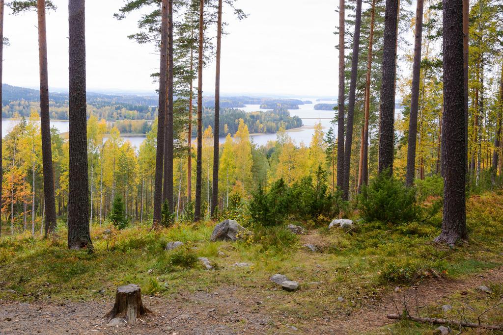 barsokevitsch_ja_oma_Kuopio; Puijon nokka 23.9.2016 -2