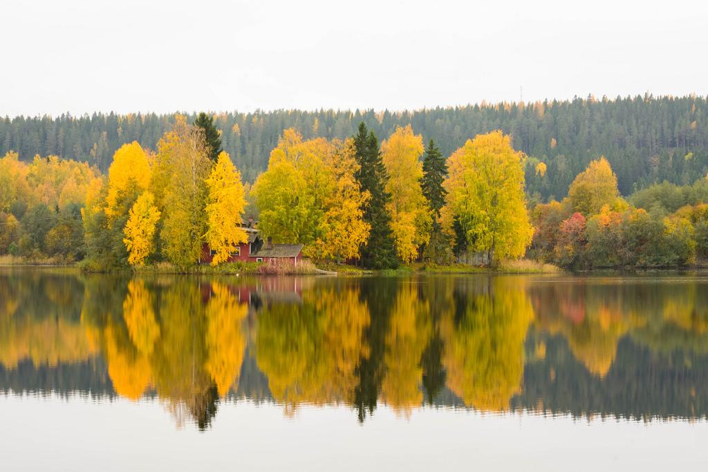 barsokevitsch_ja_oma_Kuopio, Savilahti 26.9.2016 -5