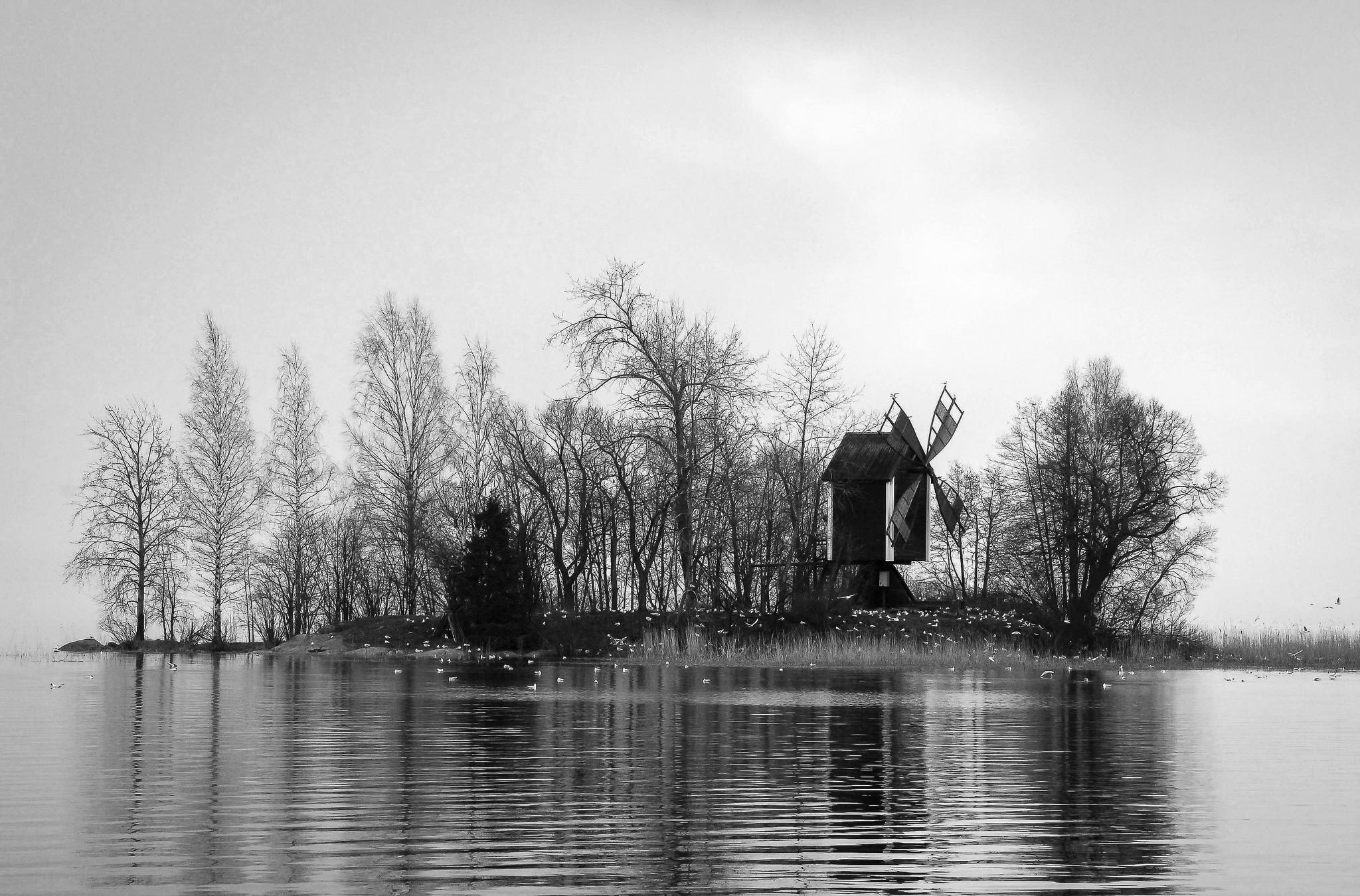 barsokevitsch_ja_oma_Kuopio; satama; Vasikkasaari 28.4.2015 -2_mv
