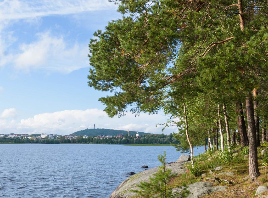 barsokevitsch_ja_omakuva_Kuopio 30.8.2017 -5b