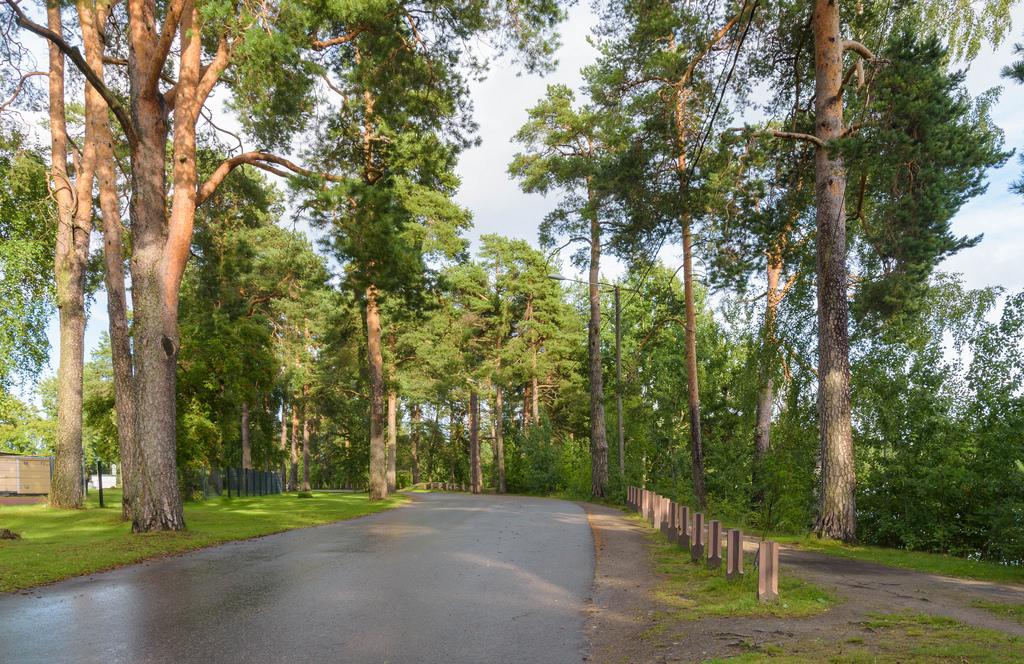 barsokevitsch_ja_omakuva_Kuopio 30.8.2017 -7b