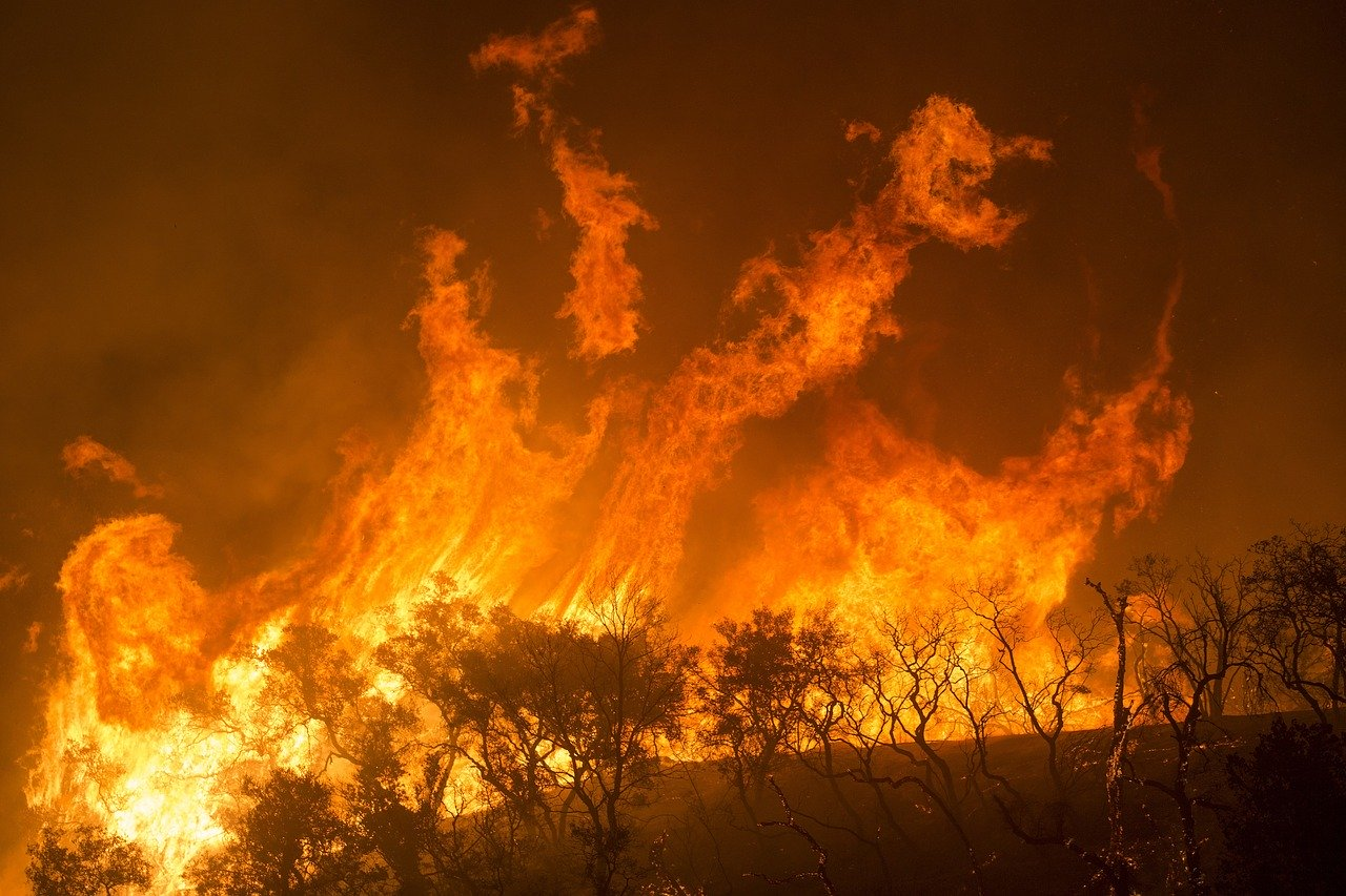 california fire photo