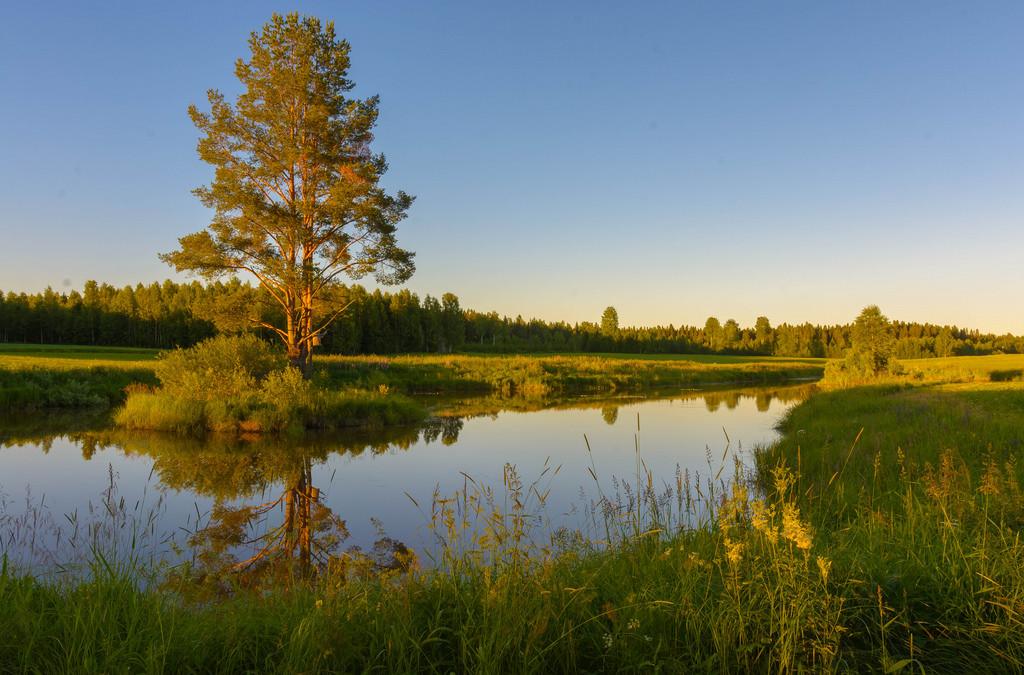 nimiarkisto_Muuruvesi 17.7.2017 -32