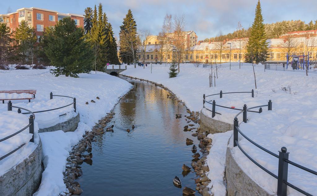 aurinkoa_Kuopio 7.1.2018-29