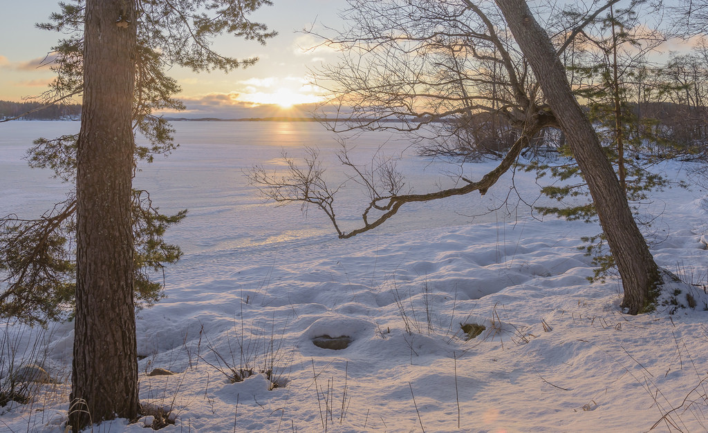aurinkoa_Kuopio 7.1.2018-8
