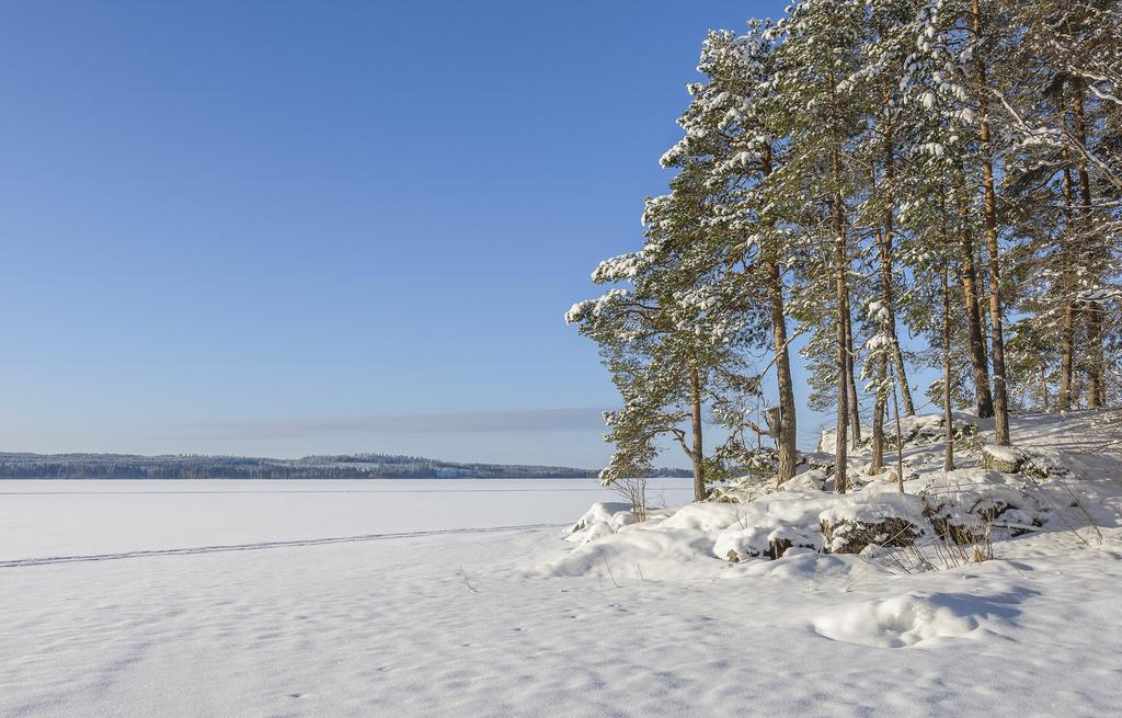 Talvinen Kuopio satelliittikuvissa
