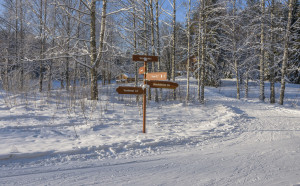 lumesta_Hiihtoretki 5.2.2018-5