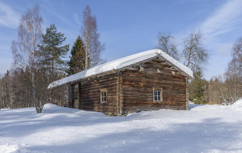 Aholansaari 18.3.2018-24