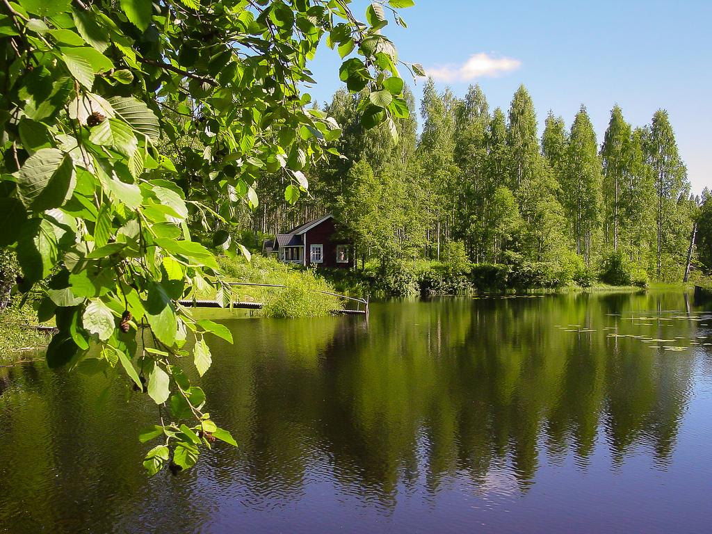 lintuvaellus_Punkaharju; Putikko 1.7.20015 -1