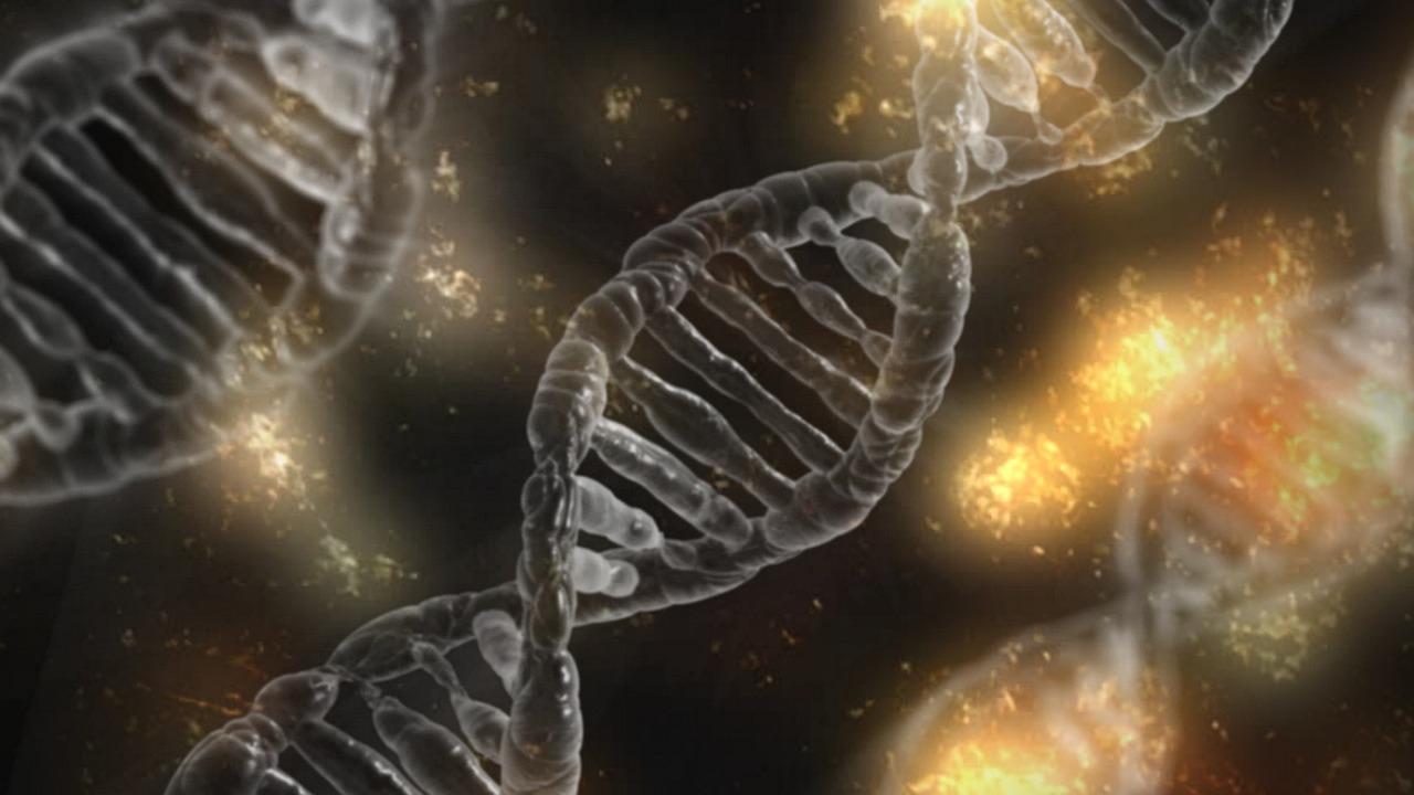 DNA, RNA ja geenit sekä geneettinen koodi