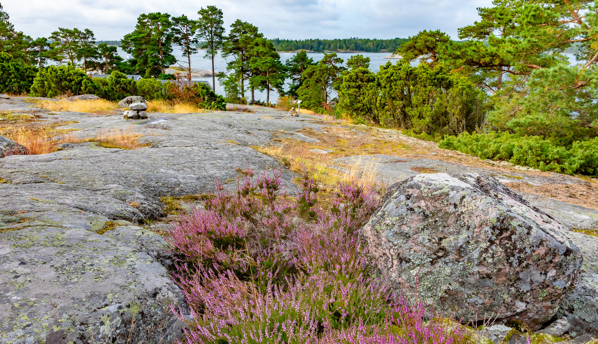 Kemiönsaari; Kasnäs 12.8.2019_11a