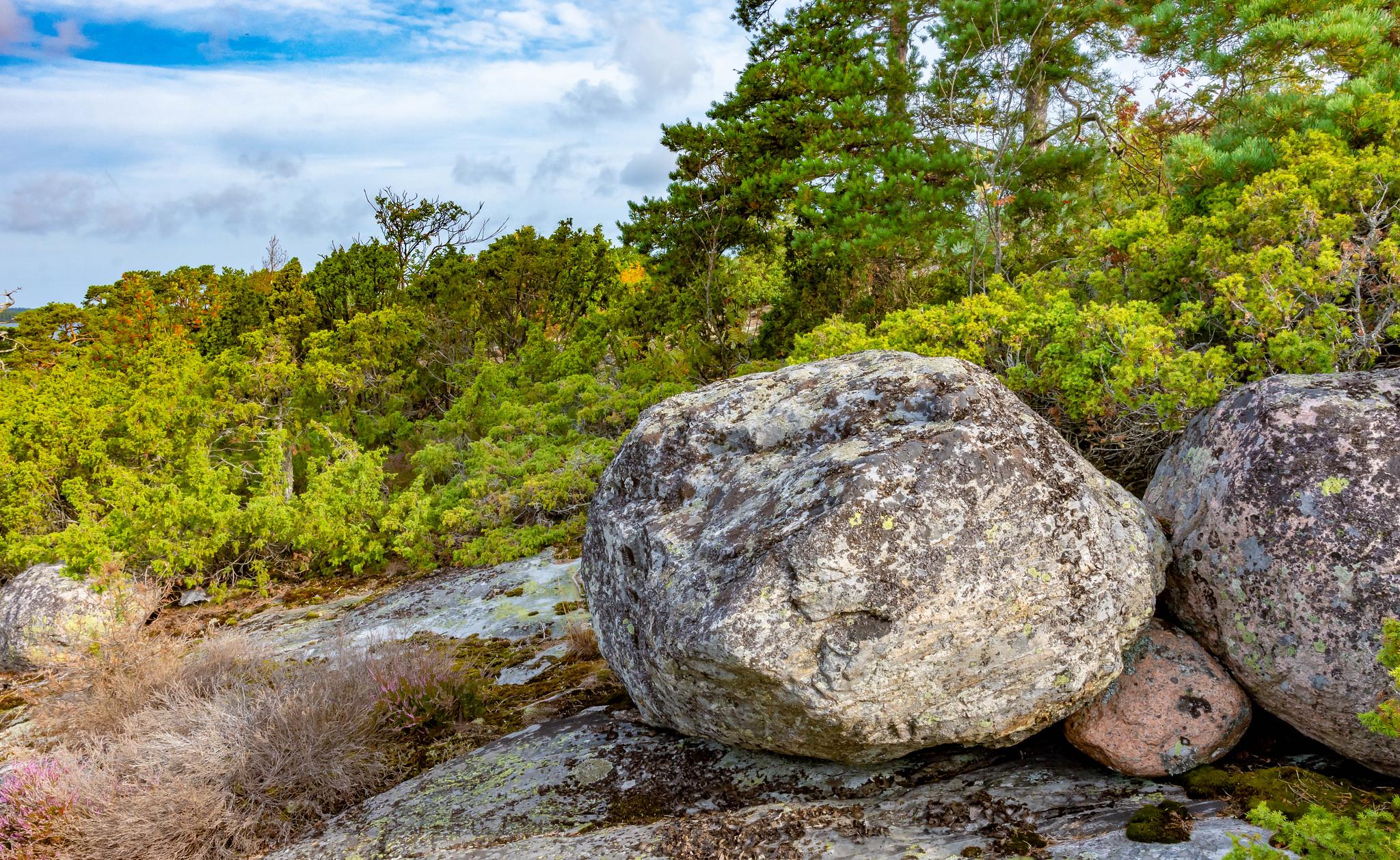 Kemiönsaari; Kasnäs 12.8.2019_15