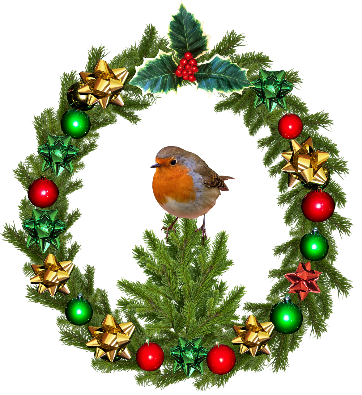 Joulun lintuja: punarinta ja punatulkku