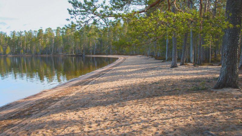 Tiilikkajärven kansallispuisto 6.5.2011