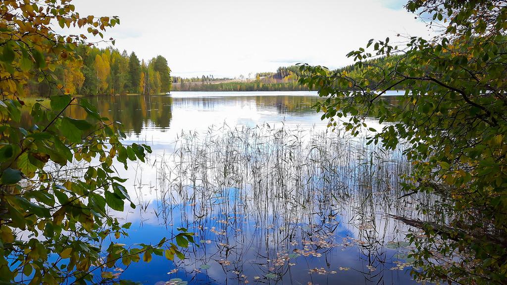 Olavinlammen kierto 27.9.2015