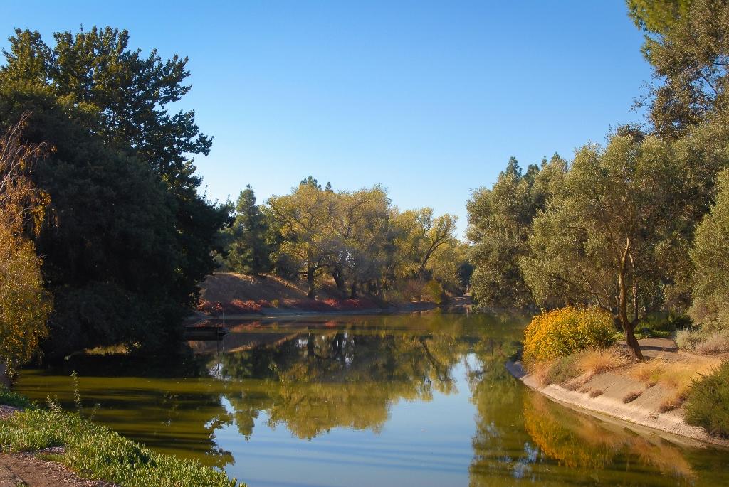 kalifornia_davis_arboretum_131031_01