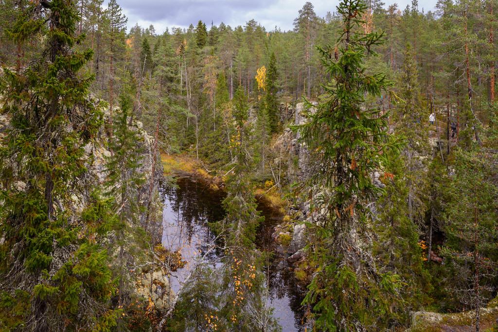 kansallispuistot_hiidenportin-kansallispuisto-24-9-2016-17