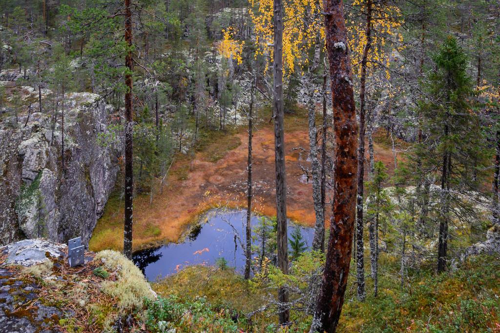 kansallispuistot_hiidenportin-kansallispuisto-24-9-2016-30