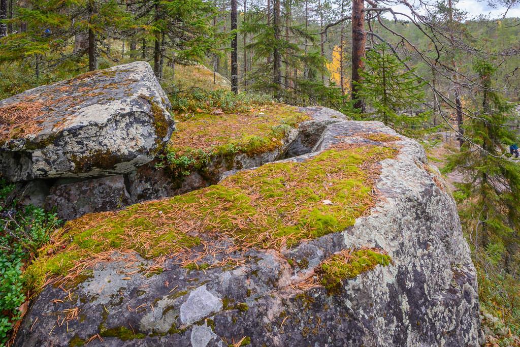 kansallispuistot_hiidenportin-kansallispuisto-24-9-2016-49