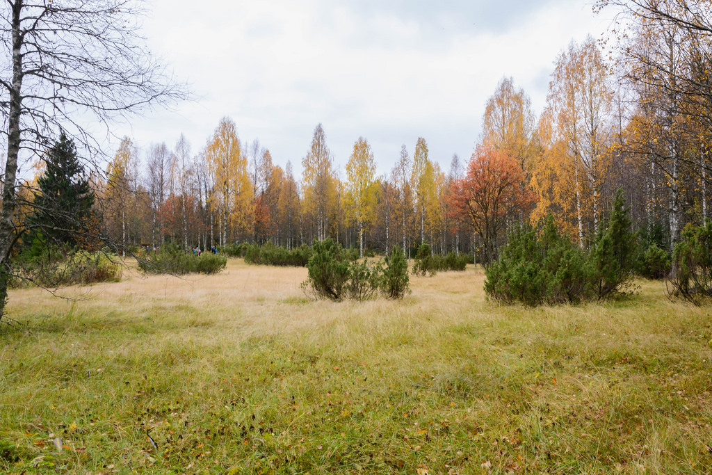 kansallispuistot_hiidenportin-kansallispuisto-24-9-2016-52