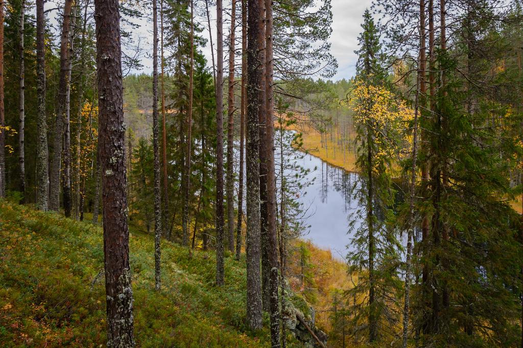 kansallispuistot_hiidenportin-kansallispuisto-24-9-2016-66