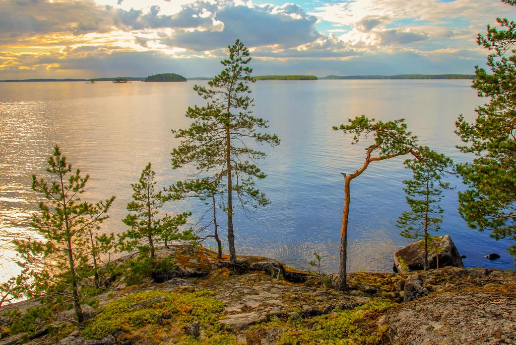 kansallispuistot_linnansaari_iso_tuunas_120606