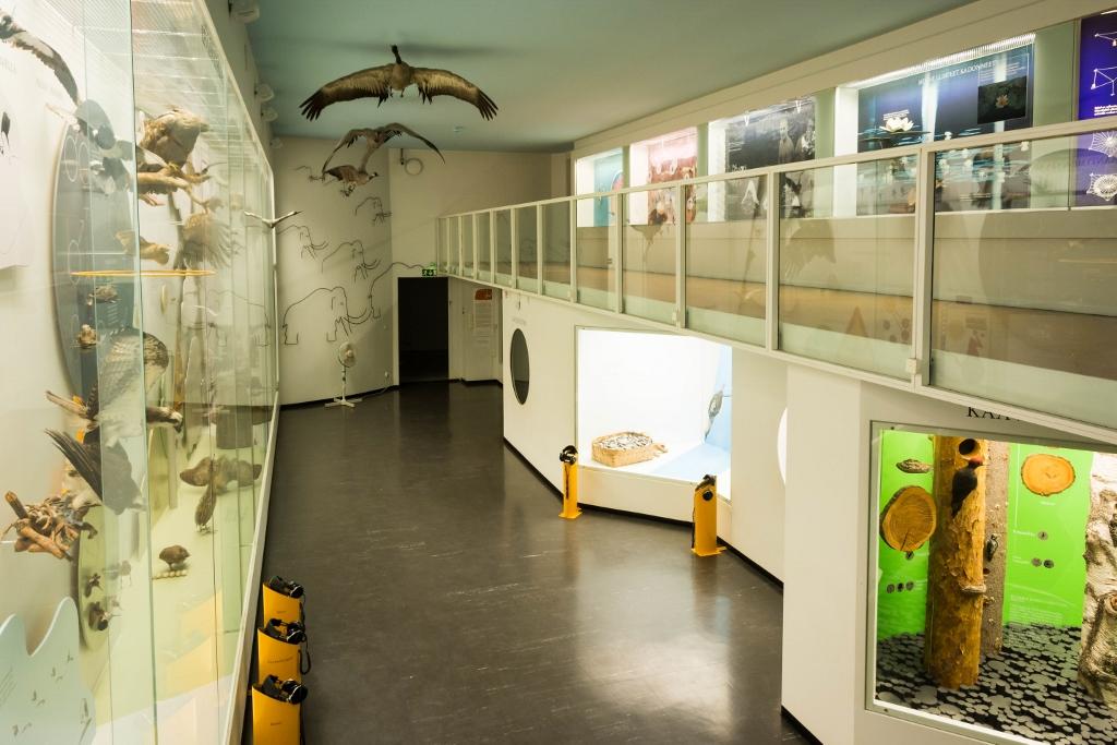 Muotokuvia mukavasta museosta