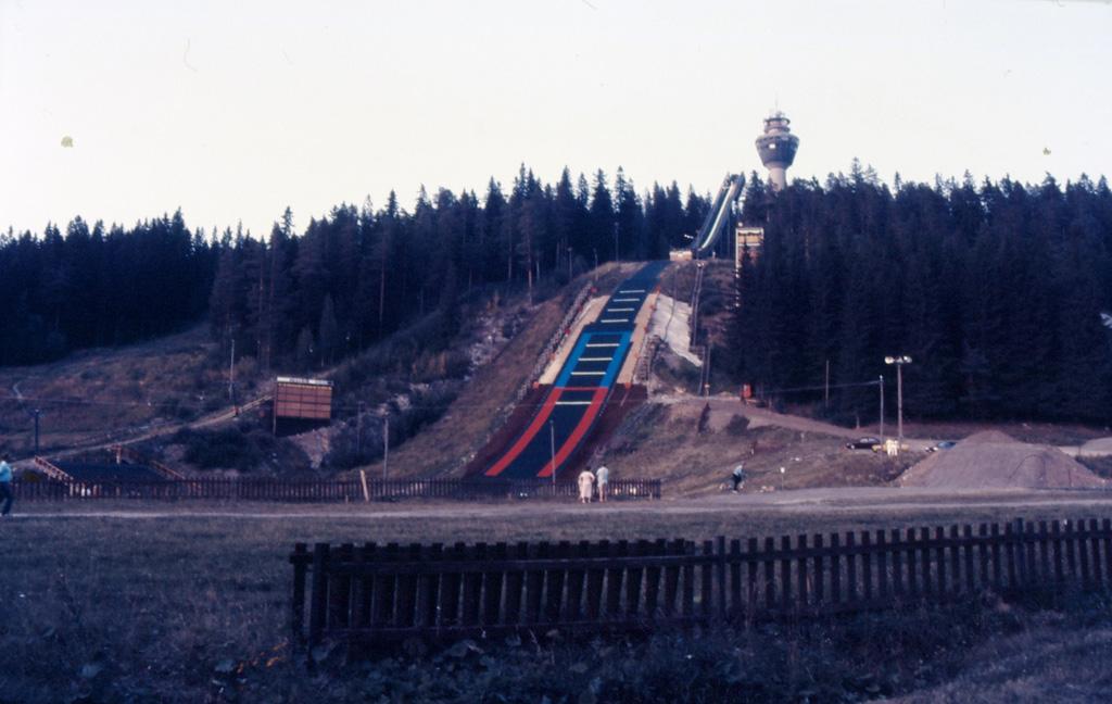 kuopioita_dioista_puijon_maki_86