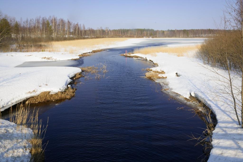 lintupaikat_Kuopio; Ritisenlahti 28.3.2016 -1 (1024x683)