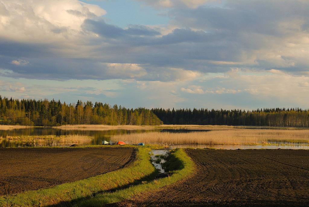 lintupaikat_kuopio_poksanlampi_08_05_20