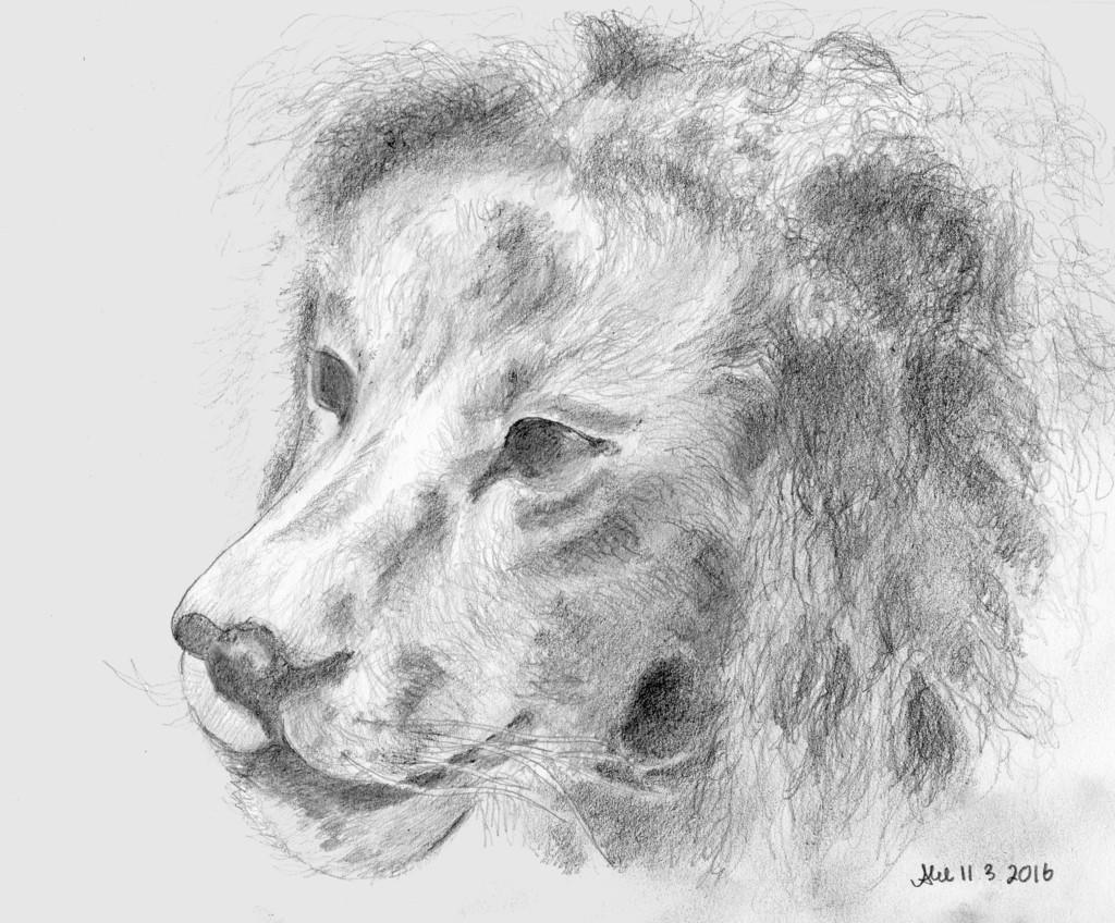 piirros_leijona_luomus_harmaasavy_tausta_01