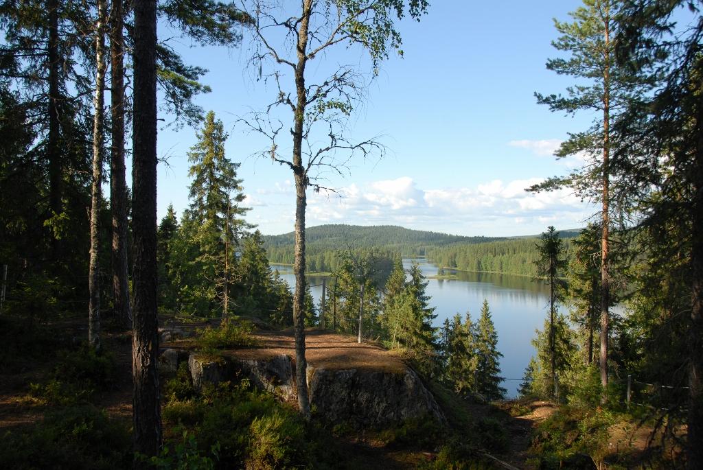 valokuvauksesta_kuopio_haminalahti